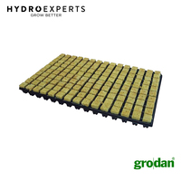 Grodan SBS Rockwool Grow Cubes | 36MM | 77 Cubes | w/ Tray | Propagation Medium